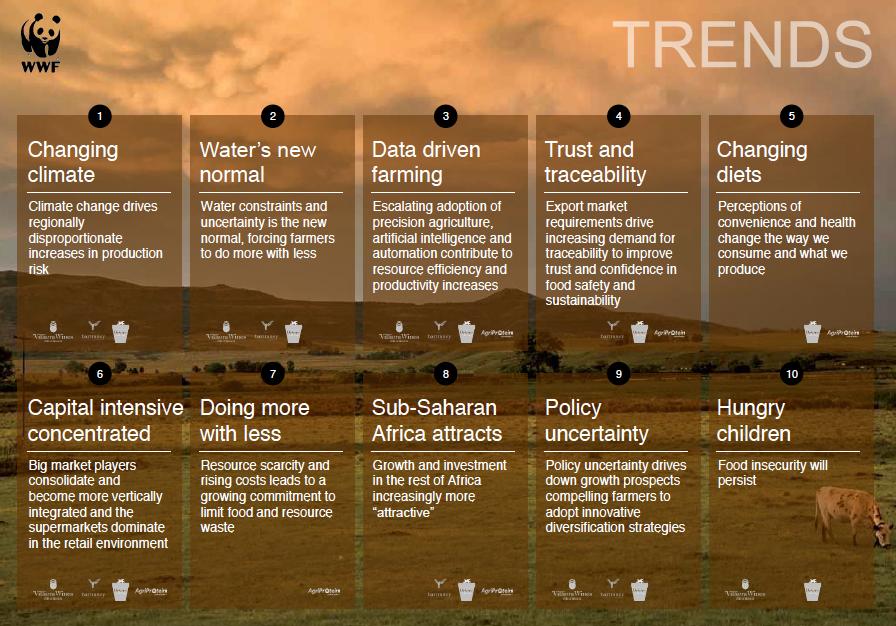 10 trends